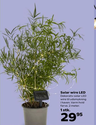 Solar wire LED