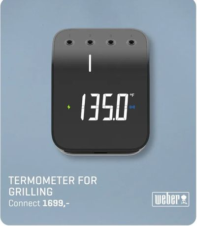Termometer for grilling