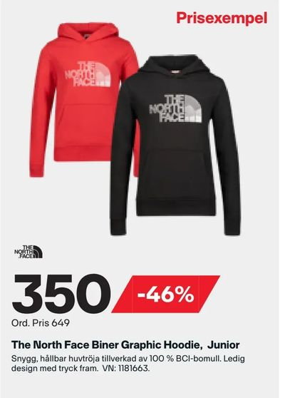 The North Face Biner Graphic Hoodie, Junior