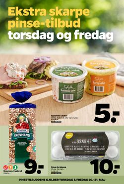 Netto Netto pinsetilbud uge 20